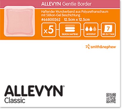 ALLEVYN Gentle Border Pack